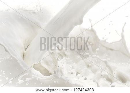 splashing milk on white background