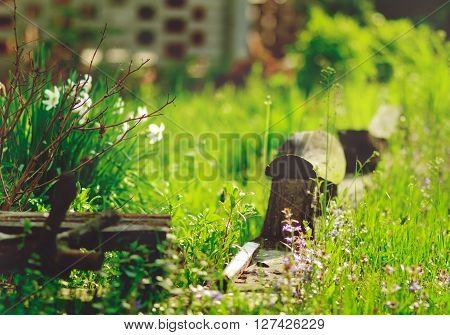 brown contry old bench with green nature background,grass,vacation,romantic,not focused,toned,country,nature,summer,spring,garden
