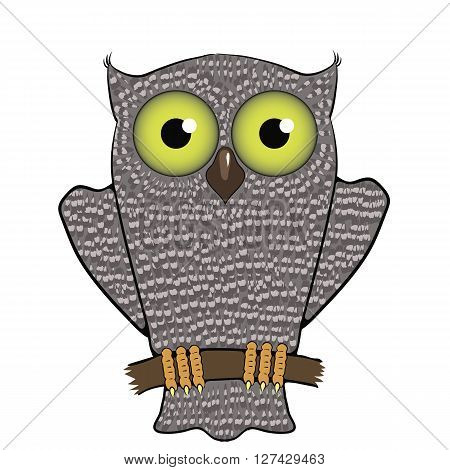 Cartoon Owl  Isolated on White Background. Predator Bird.