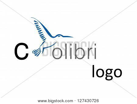 the stylish logo with tropical bird - colibri.