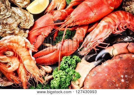 Fine selection of crustacean for dinner. Lobster crab and jumbo shrimps and oysters on dark background
