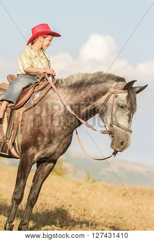 outdoor portrait of young happy boy riding a horse on farm, rural background