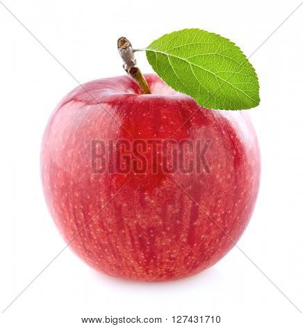 One apple with leaf