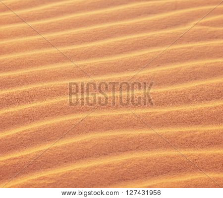 Golden Sand Dunes. Natural Background And Texture