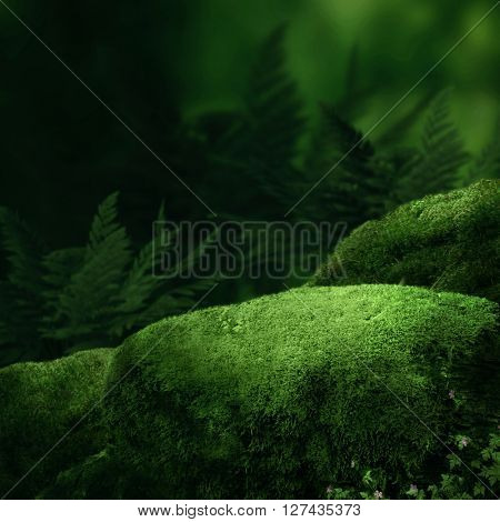 Dark magic forest with big moss stones