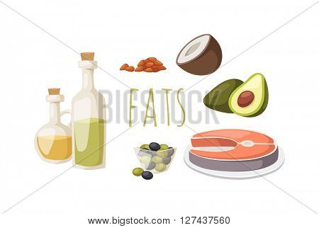 Food fats good high in protein isolated on white avocado, nuts and fish meat vector.