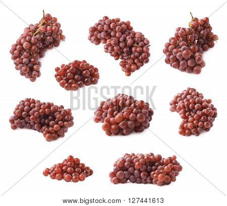 Branch of the dark grape isolated over the white background, set of multiple different foreshortenings