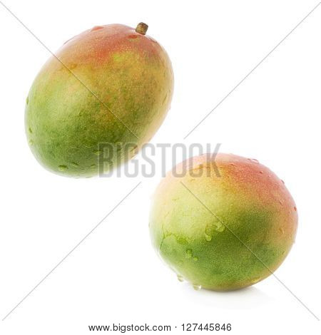 Single ripe mango fruit covered with water drops isolated over the white background, set of two different foreshortenings
