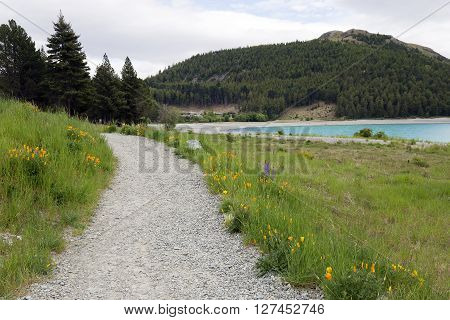 Gravel road to the Lake Tekapo camp site.