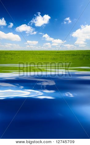 green field and blue water