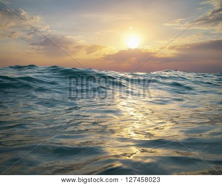 Wave on sunset. Nature composition. Element of design.