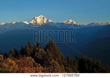 Panorama view of the majestic of himalayan mountain range during sunrise, view from Poon Hill -  view point at Nepal
