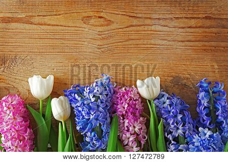 Composition of hyacinth and tulips on wooden background