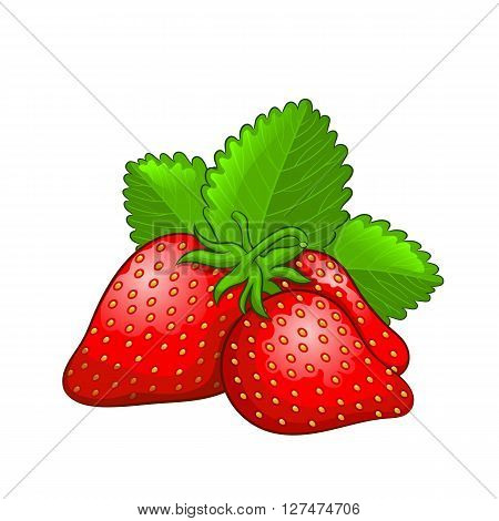 Strawberry icon in whole and half. Vector illustration