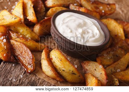 Fast Food: Potato Wedges And Mayonnaise Close-up. Horizontal