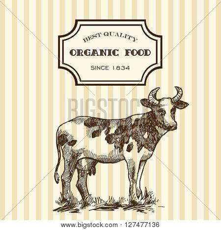 Beautiful hand drawn sketch illustration milk product for your design. Organic milk.