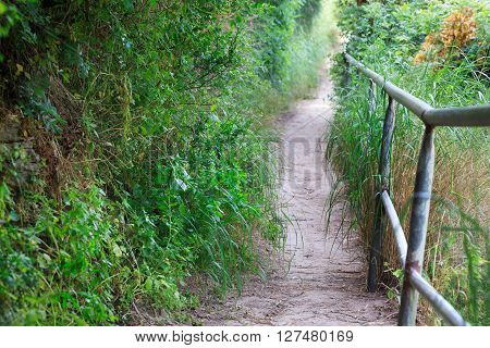 Narrow nature path with railing. Israel Middle east.