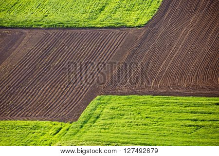 Agricultural landscape layers field and meadow view from above