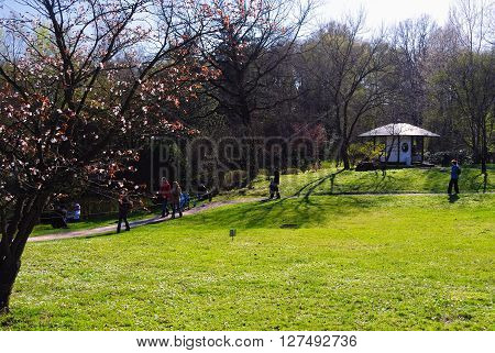 MOSCOW, RUSSIA - APRIL 24, 2014: Japanese Garden in Spring with People Walking About; Sakura Blossoming on a Lawn; Pavilion in the Background on April 24, 2014 in Botanical Garden, Moscow, Russia