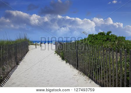 Sanded beach route to the ocean in South Beach edged with an appropriate fence green plants and people in the background. Editorial use