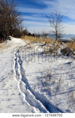 Path on winter meadow in mountains