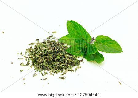 Heap of dry mint with branch of fresh on white background.Isolated.
