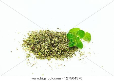 Bright green fresh origanum with dry on white background