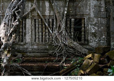 Asia Cambodia Angkor Beng Mealea