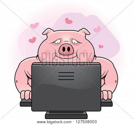 Internet Dating Pig