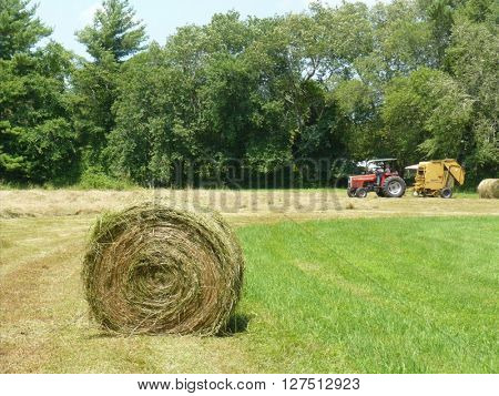 Taken in the state of Massachusetts, Hay Farmer Gathers his field hay to sell.