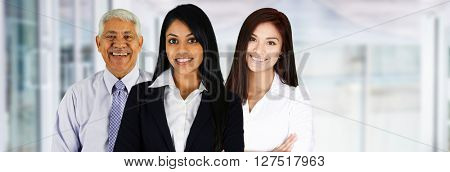 Group of businessmen and women working together