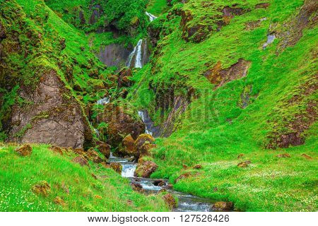 Picturesque cascade multi-stage waterfall. Mountains covered with green grass and moss. July in Iceland
