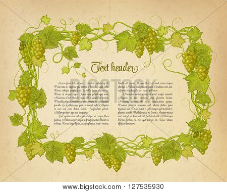 Background for your text with oldest paper and vines in vintage style. Green brunch of grapes pattern on beige background.