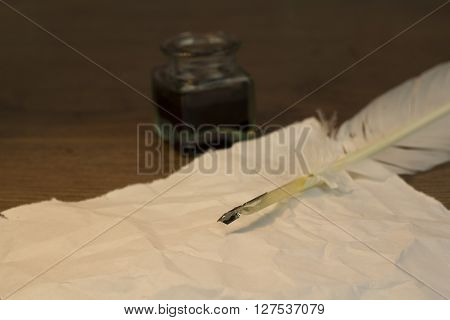 Feather Quill Pen With Metal Nib