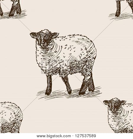Sheep sketch style seamless pattern vector illustration. Old engraving imitation.