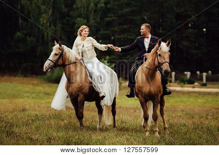 beautiful fabulous happy bride and stylish groom riding brown horses and hold each other's hands on the background of the autumn park