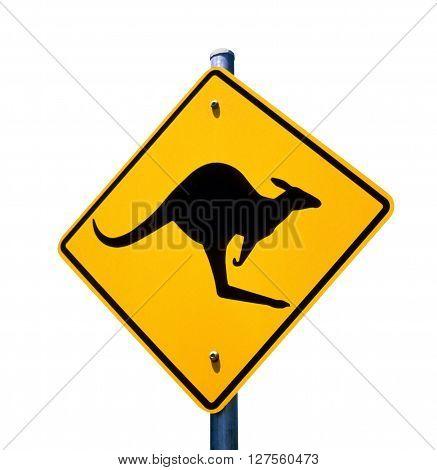 Kangaroo roadside safety warning sign in Australia.