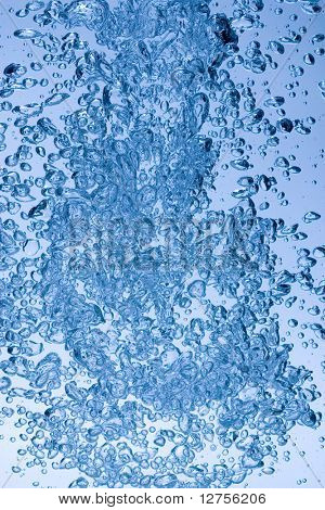 Extreme close up of rise moving up in water
