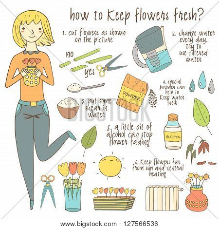 Cute hand drawn doodle instruction about how to keep flowers fresh including girl vase flowers scissors water sugar filter alcohol bottle sun. Instruction tutorial advice with pictures