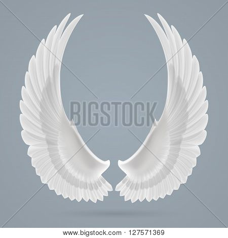 Inspiring white wings drawn separately on a gray background