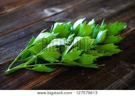 Lovage Herb On Wooden Background