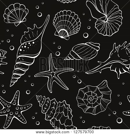 Marine seamless background from hand drawn sea shells and stars. Nautical pattern with shellfishes on blackboard.
