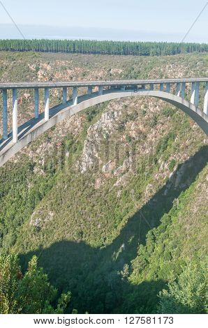 BLOUKRANS BRIDGE SOUTH AFRICA - MARCH 2 2016: Unidentified base jumper gliding beneath Bloukrans Bridge at 216 meter above the Bloukrans River the highest bridge in Africa