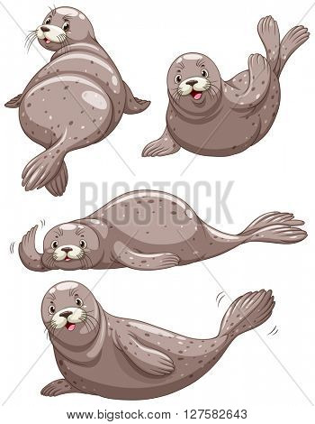 Four seals with happy face illustration