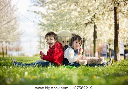 Two Cute Little Children, Boy Brothers, Eating Strawberry In The Park