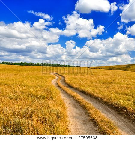 The dirt road leaves for the horizon in the picturesque steppe against the blue sky with white clouds