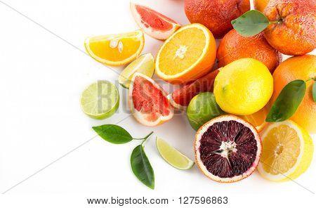 collection citrus fruit