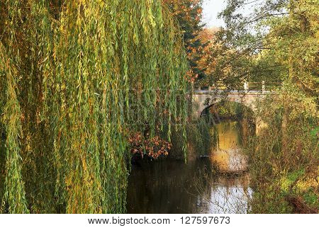 Bridge over a river between weeping willow