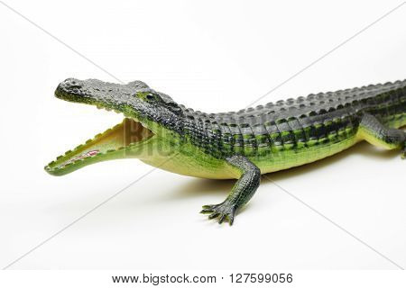 crocodile toy for child play and funny