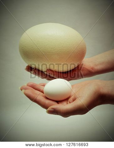 Big ostrich egg and a small hen's egg in woman hands